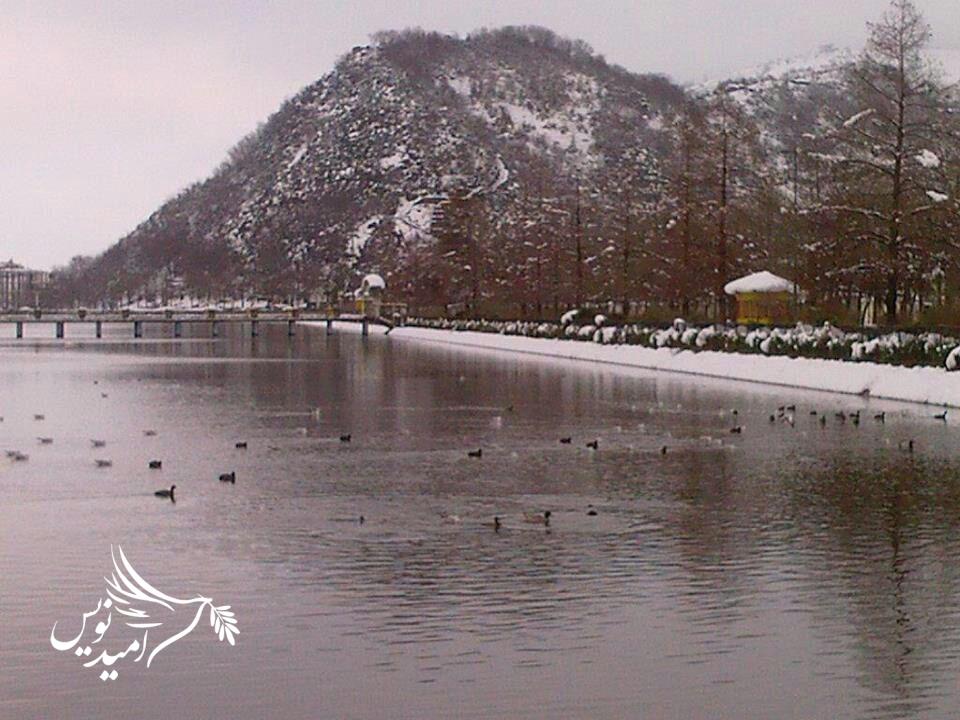 در این روزهای برفی و سرد با انجام برخی موارد ساده از حیوانات و طبیعت مراقبت کنیم و با آنها مهربان باشیم